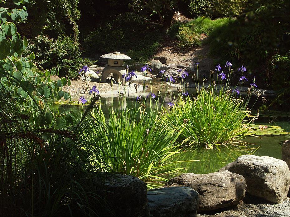 Japanischer Garten im botanischen Garten der Universität ...